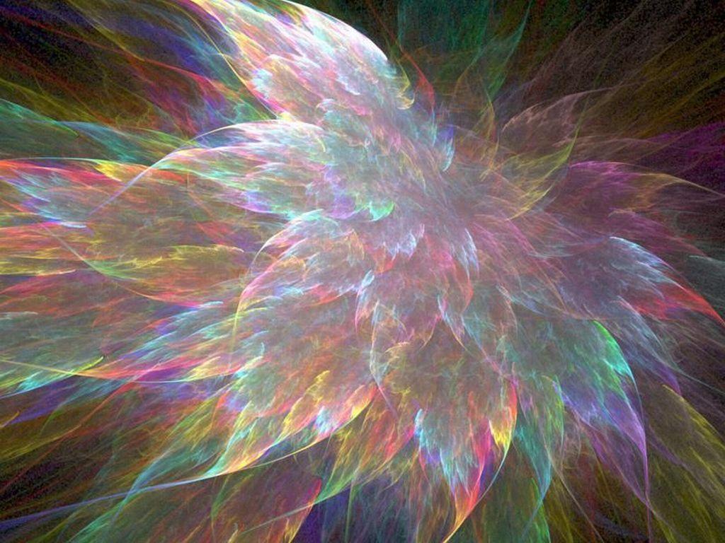 Marotochi sfondi - Immagini di tacchini a colori ...